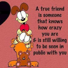 A true friend is someone that knows how crazy you are and is still willing to be seen in public with you.