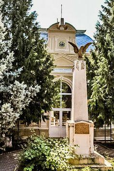 Liceul Ion Neculce Targu Frumos