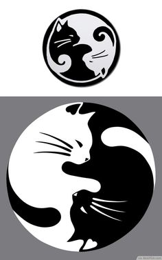 Yin Yang lucky cat tattoo