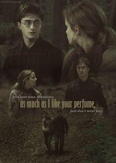 Harry Potter Film, Always Harry Potter, Harry Potter Tumblr, Harry James Potter, Harry Potter Pictures, Harry Potter Quotes, Harry Potter Universal, Harry Potter Fandom, Harry Potter Characters