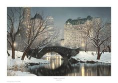 Twilight in Central Park. I want a beautiful snow like this!