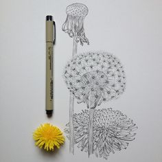 Dandelion | Illustration by Noel Badges Pugh