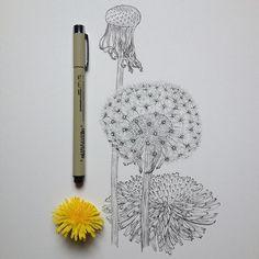 Dandelion | Illustration by Noel Badges Pugh