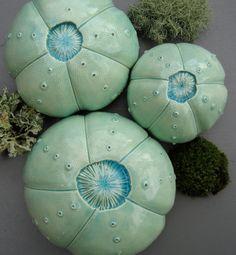 Turquoise ceramic sea urchin wall ornaments