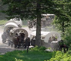 Jackson Wyoming ~ Travel by horse drawn covered wagons into Cache Creek Canyon. Enjoy a dutch oven dinner and listen to a live cowboy band before heading back to Jackson.