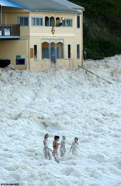 """It was as if someone had poured tons of coffee and milk into the ocean, then switched on a giant blender.  Suddenly the shoreline north of Sydney were transformed into the Cappuccino Coast.  Foam swallowed an entire beach and half the nearby buildings, including the local lifeguards' center, in a freak display of nature at Yamba in New South Wales."""