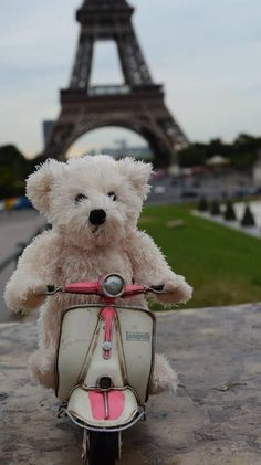 Teddy on holiday in Paris Panda Teddy, Baby Teddy Bear, Cute Teddy Bears, Tatty Teddy, Teddy Hermann, Tedy Bear, Teddy Bear Sewing Pattern, Teddy Bear Pictures, Crochet Teddy
