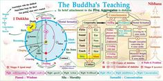 Buddhist pictures - PURE LAND BUDDHISM IS THE BEST TEACHING OF BUDDHA TO EVERY HUMAN BEING Buddha Teachings Quotes, Buddhist Teachings, Buddhist Quotes, Science Of The Mind, Buddha Thoughts, Stream Of Consciousness, Buddha Buddhism, Mentally Strong, World Religions