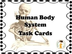 This set includes 50 reinforcement and review cards for science students in grades 6-10. There are 5 cards each on the body systems as a whole, and 5 on each system (circulatory, immune, respiratory, digestive, endocrine, excretory, nervous, muscular, ske