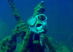 Truk Lagoon, located in the South Pacific archipelago, may boast the densest shipwreck field in the world. Sunk during WWII by American bombs, the Fujisan Maru is the most famous wreck of the lot.