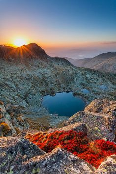 Tear Drops. Rila Mountain. Bulgaria.