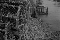 35mm film photography black and white - Shot on 400iso, 35mm, Black and White Film. Shot, Developed and Printed by myself as a part of a 35mm Photography assignment last year.  Not a great shot but I just really liked the texture of the old Lobster Cage Netting and the long spaghetti like ropes.  The link is to my Photography Instagram <3 Color Photography, Film Photography, Digital Photography, 35mm Film, Great Shots, Ropes, Black And White Photography, Cage, Spaghetti