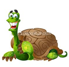 Vector turtle on white background — Stock Vector