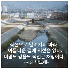 시사in북에서 펴낸책, 하고싶은 일 해, 굶지않아라는 책에는 송인수 공동대표(사교육걱정없는세상)가 쓴 강은 곡선으로 흘러 아름답다라는 글이 있다. 좋은 글입니다.