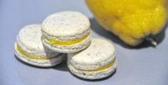 Har du lurt på hva du skal bruke alleeggeplommene til,alle de du får til overs fra makronbakingen? Dette kan være løsningen for deg! Sitron er syrlig, men med litt sukker kan man trylle fram fantastiske fyll som virkelig gir makronene en frisk smak. Tildisse makronenhar jeg laget en lemon curd, eller sitronkrem som må være … Cake Bars, Macaroons, Camembert Cheese, Frisk, Lemon Curd, Sweets, Sugar, Cookies, Baking