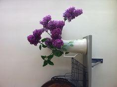 Lilacs on the shelf