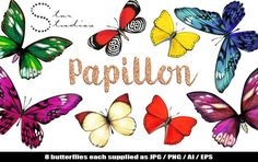 Papillon by Star Studios on Creative Market