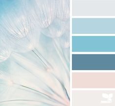 wishing hues Color Palette by Design Seeds Colour Pallette, Color Palate, Colour Schemes, Color Combos, Color Patterns, Blue Palette, Design Seeds, Color Swatches, Color Theory