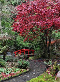Tuinposter van Japans tuinpad met rode brug