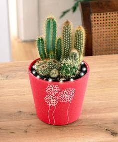 Pots et jardini res on pinterest pots hanging pots and - Pots et jardinieres ...