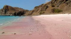 Pink Beach, Komodo National Park – Indonesia by Far Out Photography Komodo National Park, Hidden Beauty, Sky Sea, Beautiful World, Natural Beauty, Places To Go, Scenery, Earth, Adventure