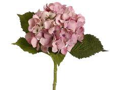 32 best pink silk hydrangea images on pinterest hydrangeas silk flower hydrangea in antique pink bloom x tall mightylinksfo