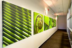 Project: Images of Natural Beauty at San Dimas Women's Medical Group - CODAworx