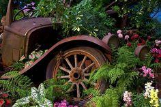 Old Car Garden Art: 20 Inspirations You Need To Know About Fire Truck Bedroom, Truck Tattoo, Rusty Cars, Truck Art, Truck Design, Vintage Trucks, Flower Beds, Yard Art, Garden Beds