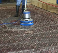 It is what Pet Odor Removal Palm Beach customers would expect when they use our family owned business for rug cleaning. Oriental Rug Cleaning, Grout Cleaner, Odor Remover, Pet Odors, How To Clean Carpet, Concrete Floors, Palm Beach, Something To Do, Area Rugs