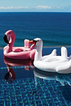 sunnylife - inflatable flamingo (2 sizes)