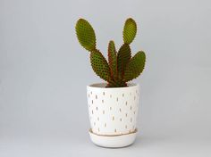 Lovely white and gold handmade ceramic planter with saucer