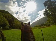 Waipio by Horseback, Big Island | Hawaii Pictures of the Day