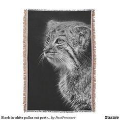 Black in white pallas cat portrait throw blanket Pallas's Cat, Cats, Photo Memories, Throw Blankets, Party Hats, Are You The One, Art Pieces, Cool Stuff, Portrait
