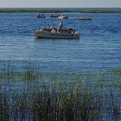 Bass Fishing Experience on Lake Okeechobee with 3 Night Stay, Car Rental and Airfare for (2)