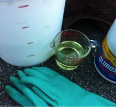 How to Clean Outdoor Mold and Mildew
