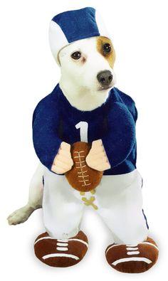 Football Fever Dog Costume - Dog Halloween Costume