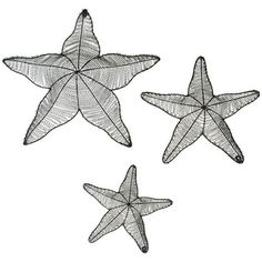 Starfish Wall Decor Art - Set of 3 (1.820 CZK) ❤ liked on Polyvore featuring home, home decor, wall art, backgrounds, art, drawings, extra, filler, decorative objects and 3 pc wall art