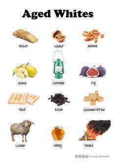 Wine taste chart_Aged whites@AdelaideX, edX