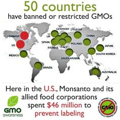 """Monsanto. Good read with references.  Not suprisinging that the link for Monsanto has its own research links but that the """"page cannot be found"""" or the studies are by FDA -which is in Monsanto  themselves- so a unreliable source.  Also no safe studies listed in public medical databases just the independent studies that show probable harm..."""