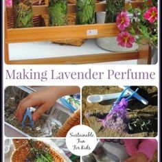 perfume-pin-collage