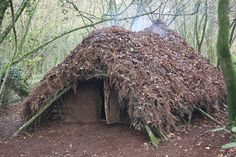 Wilderness Survival Skills and Bushcraft Antics: Building A Long Term Shelter part 1: