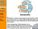 Water Cycle and Water for Kids Water Cycle, Science Resources, Homework, Kids, Children, Boys, Children's Comics, Boy Babies, Kid