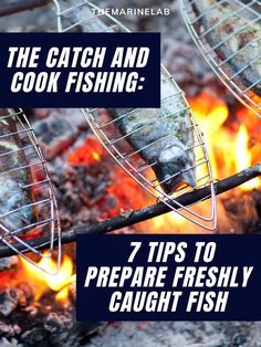 """If you are a fisherman, you've heard of the """"catch and cook"""" type of fishing. But have you ever tried it? If not, let us introduce you to it. #fishinglife #fishingtrip #fishingislife #fishingdaily #fishingday #fishingboat Fishing Life, Best Fishing, Fly Fishing, Catfish Fishing, Fishing Boats, How To Cook Fish, Types Of Fish, Cooking Oil, Go Camping"""
