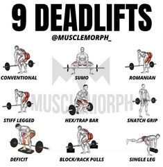 Deadlift Variations, Gym Workouts, Muscle, Pure Products, Memes, Army, Instagram, Fitness, Gi Joe