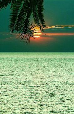 """Verde mar..."""