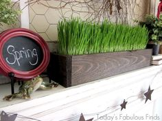 Today's Fabulous Finds: Rustic Wood Planter--Growing [wheat] grass for decoration! Cheap Planters, Rustic Planters, Grass Centerpiece, Easter Centerpiece, Easter Decor, Table Centerpieces, Wedding Centerpieces, Growing Wheat Grass, Planter Boxes