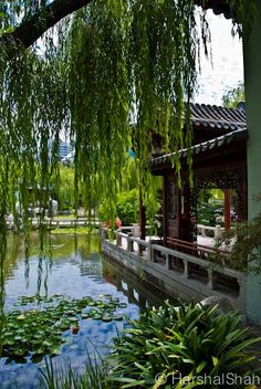 The beautiful Chinese Garden of Friendship, Darling Harbour, Sydney