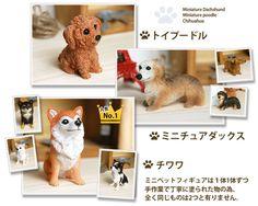 結婚式にも愛犬を。選べる犬種はトイプードル、チワワ、ミニチュアダックス Poodle, Dachshund, Miniatures, Teddy Bear, Toys, Animals, Activity Toys, Animales, Animaux