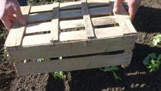 10 astuces simples pour économiser de l'eau au jardin – Page 8 – astu-jardin