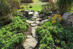 5 Sensible Cool Tips: English Backyard Garden Pathways courtyard garden ideas mediterranean.Fairy Garden Ideas In A Pot balcony garden ideas patio.Backyard Garden Planters How To Build. Backyard Walkway, Garden Landscaping, Walkway Ideas, Path Ideas, Landscaping Ideas, Balcony Garden, Lawn And Garden, Gravel Garden, Garden Pond